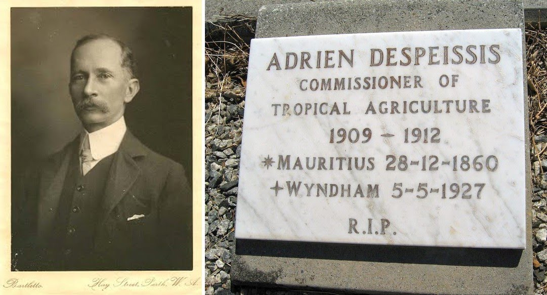 1910-ca - Adrien Despeissis - WA Commisioner of Tropical Agriculture & his grave at the Gully Cemetery, Wyndham