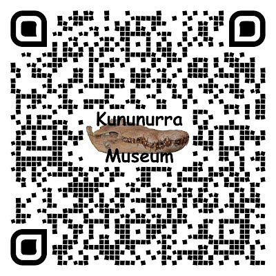 "QR Code Cool style with image of Crocodile Skull in centre and text ""Kununurra Museum"" created by AB for KHS and that is linked by QR Code from the new interpretive heritage signage to give more information than was possible in the signage."
